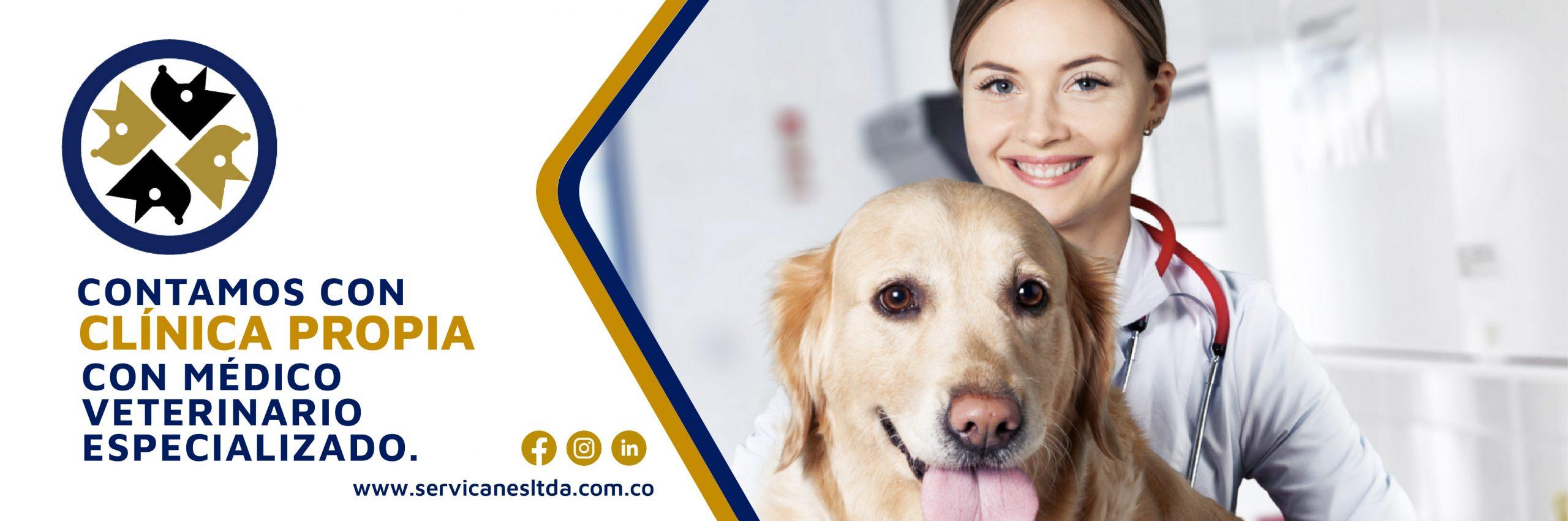Servicanes cuenta con Clínica Propia y veterinario especializado